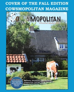 INTERVIEW MET A.L.H. IN COWSMO