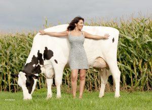 Hoe fraaier als vaars, hoe sneller bij 100.000 kg melk!