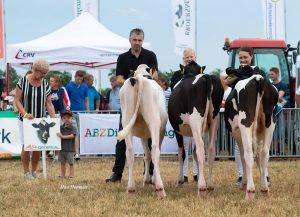 Succesvolle en gezellige veekeuring Noord-Friesland