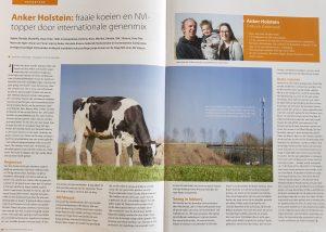 Top vaars voor Anker-Holstein!