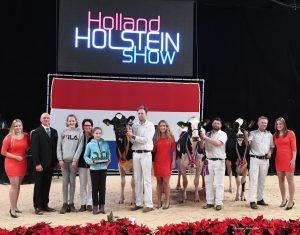 Beautiful Holland Holstein Show 2018