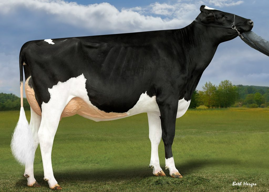 S-S-I Doc Have Not 8784 2y VG-89