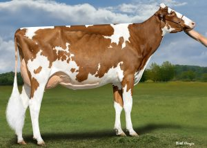 Apple-Pts Applejacks Red EX-90