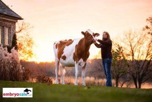 Investeer hier in wereldwijd bewezen koefamilies !