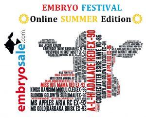 "Embryo Festival ""Summer Edition"""